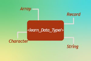 What Is Data Type